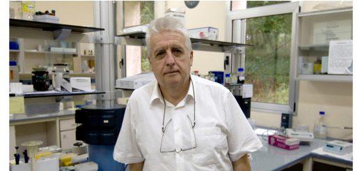 Félix Goñi