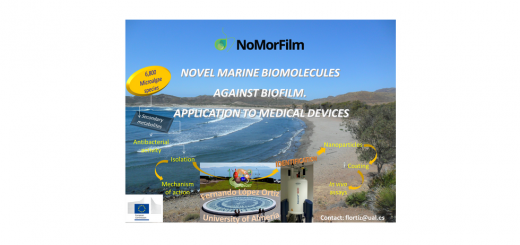 Postdoctoral research fellow in Nuclear Magnetic Resonance (EU project Nomorfilm)