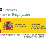 PhD contracts from the Spanish Government (MINECO): National Programme for the Promotion of Talent and Its Employability