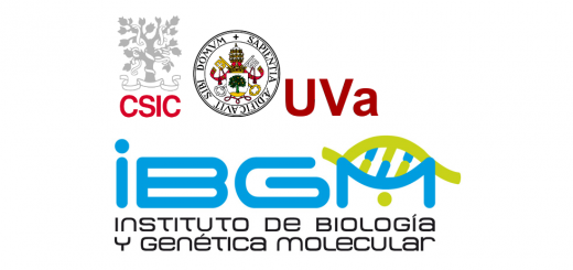 Institute of Biology and Molecular Genetics - IBGM from the University of Valladolid - UVA
