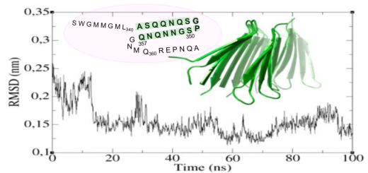 Structural Evidence of Amyloid Fibril Formation in the Putative Aggregation Domain of TDP-43. J Phys Chem Lett. 2015 Jul 2;6(13):2608-15. doi: 10.1021/acs.jpclett.5b00918.