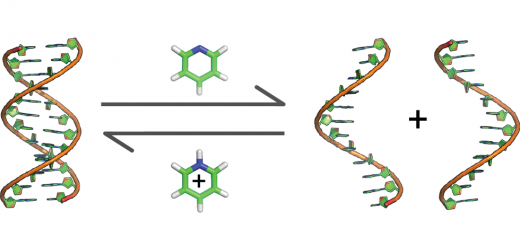 Can A Denaturant Stabilize DNA? Pyridine Reverses DNA Denaturation in Acidic pH. Angew Chem Int Ed Engl. 2015 Sep 1;54(36):10488-91.