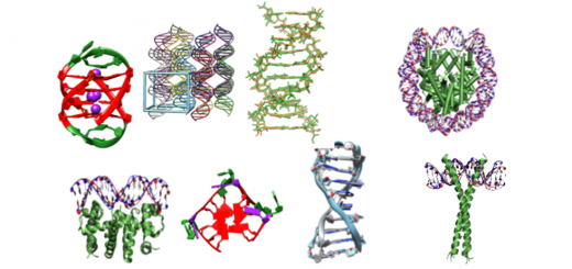 Parmbsc1: a refined force field for DNA simulations. Nat Methods. 2016 Jan;13(1):55-8. doi: 10.1038/nmeth.3658.