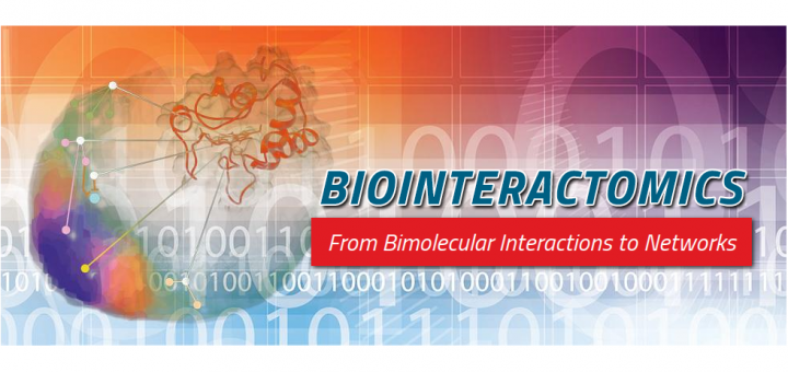 Biointeractomics: from bimolecular interactions to networks. Seville, Spain, May 17–20, 2016.