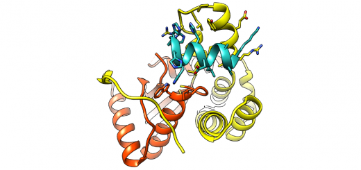 The Redox State Regulates the Conformation of Rv2466c to Activate the Antitubercular Prodrug TP053. J Biol Chem. 2015 Dec 25;290(52):31077-89. doi: 10.1074/jbc.M115.677039.