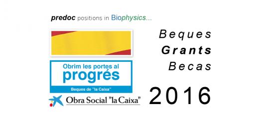 """Beques de """"la Caixa"""" per a estudis de doctorat en universitats o centres de recerca espanyols Convocatòria 2016"""