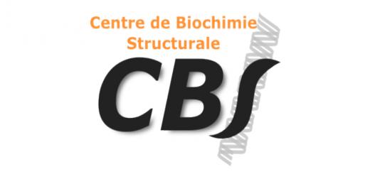 Centre de Biochimie Structurale (CBS) in Montpellier (France).