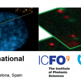 ICREA International Symposium. BioNanoVision of cellular architecture: from the nucleus to the cell membrane. 25-27 May 2016 | Barcelona, Spain.