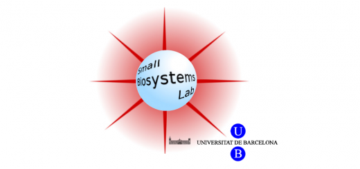 Small Biosystems Lab, University of Barcelona (Felix Ritort Lab).