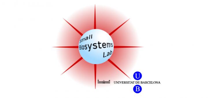 Postdoctoral Position at the Small Biosystems Lab – Biofísica