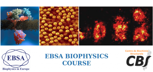 EBSA Biophysics course: Membrane and lipid-protein interactions