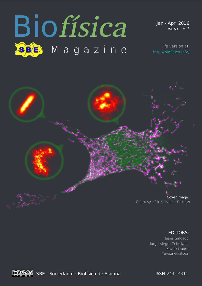 Biofisica: Magazine of the Spanish Biophysical Society (Sociedad de Biofísica de España - SBE). #4 Jan-Apr 2016