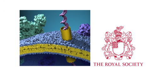 Membrane pores: from structure and assembly, to medicine and technology. London, June 27-28, 2016