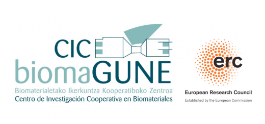 Postdoctoral Position in Computational Protein Engineering. CIC biomaGUNE.