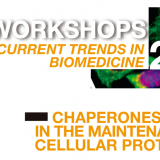 "Workshops ""Current Trends in Biomedicine"": Chaperones in the maintenance of cellular proteostasis"
