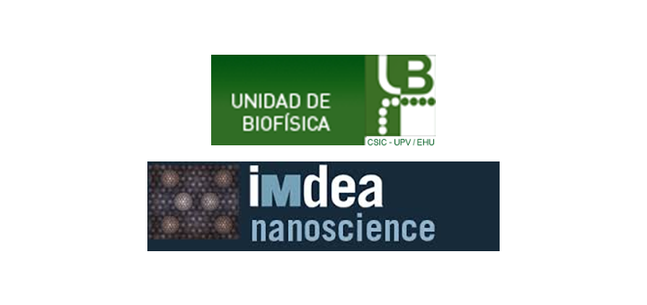 Postdoc position at Ibarra and Frolov groups