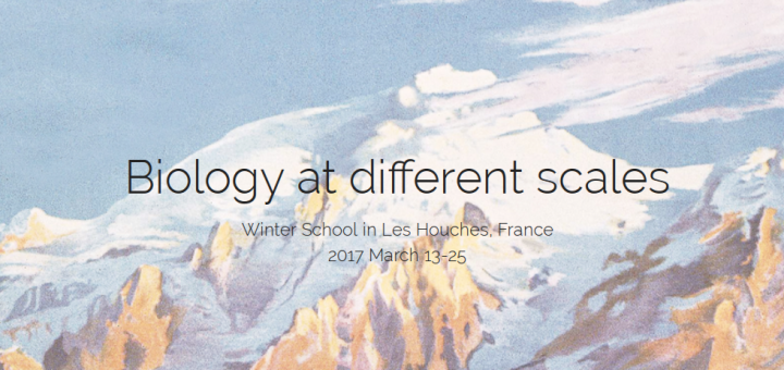 Biology at different scales. Winter School in Les Houches, France 2016