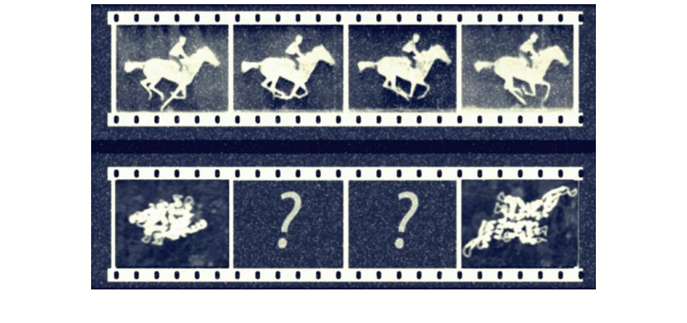 Eadweard Muybridge's pictures of a galloping horse enabled detailed analysis of animals and humans in motion. Today's protein research is faced with a similar situation when trying to understand how proteins move.