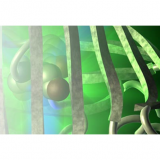 The European Society for Molecular Imaging - ESMI