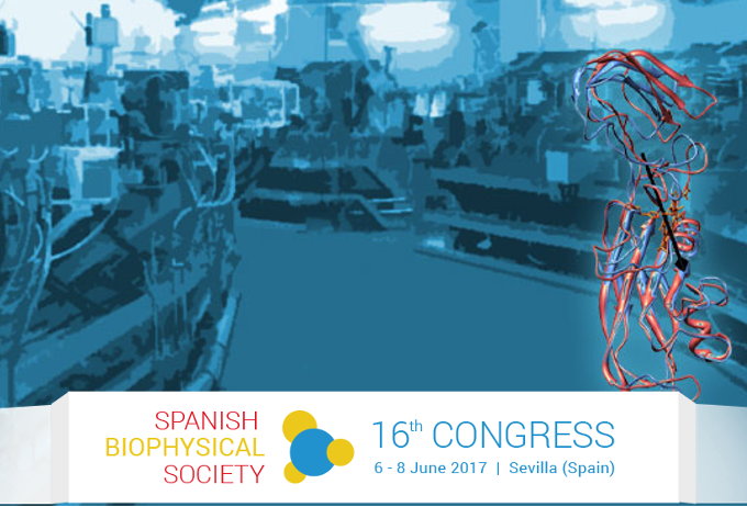 16th Annual Meeting of the Spanish Biophysical Society. June 6 – 8, 2017, Sevilla (Spain)