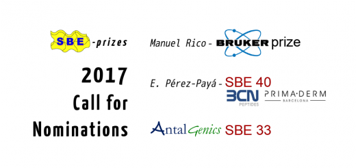 Call for SBE prizes 2017