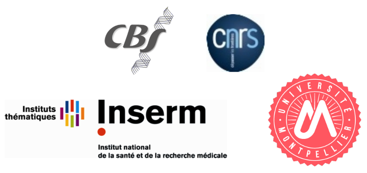 Postdoctoral Positions in Biomolecular Simulations Centre de Biochimie Structurale, Montpellier (France)