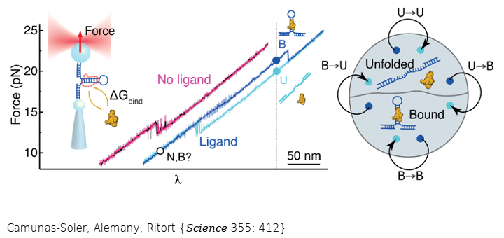 A fluctuation theorem for ligand binding allows to extract binding energies from non-equilibrium force experiments where macromolecules are pulled apart. The measurement does not require dilute ligand conditions or to assume a reaction model of the interaction.