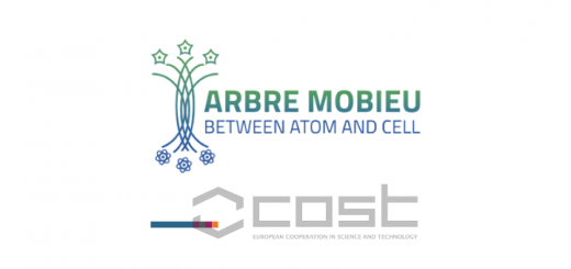 ARBRE/MOBIEU Network: Integrating Molecular Biophysics Approaches in Europe