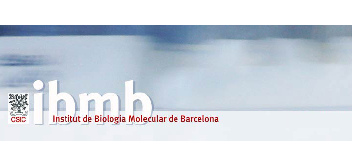 Postdoctoral position in protein design. Proteolysis Lab of the Structural Biology Unit (SBU).