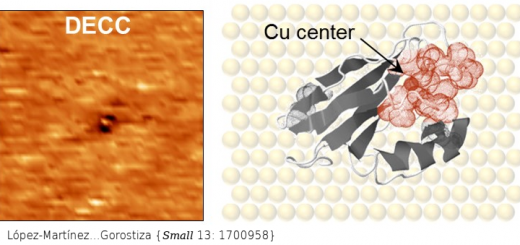 Differential Electrochemical Conductance Imaging at the Nanoscale. Small. 2017 Sep;13(36). doi: 10.1002/smll.201700958.
