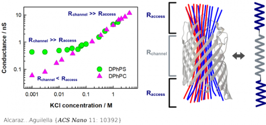 Ion Transport in Confined Geometries below the Nanoscale: Access Resistance Dominates Protein Channel Conductance in Diluted Solutions. ACS Nano. 2017 Oct 24;11(10):10392-10400. doi: 10.1021/acsnano.7b05529.