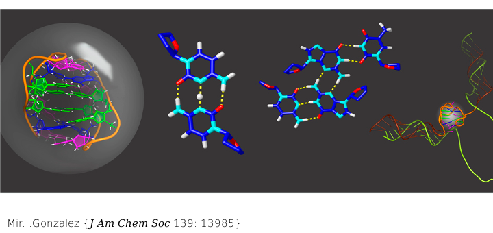 Prevalent Sequences in the Human Genome Can Form Mini i-Motif Structures at Physiological pH. J Am Chem Soc. 2017 Oct 11;139(40):13985-13988. doi: 10.1021/jacs.7b07383.