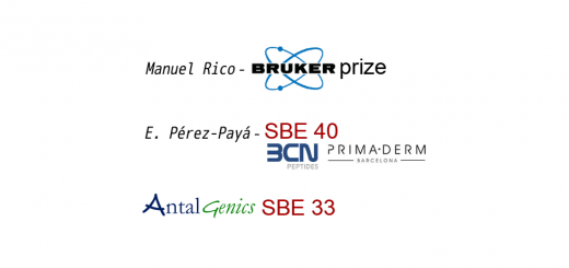 SBE Prizes 2018 – Call for Nominations