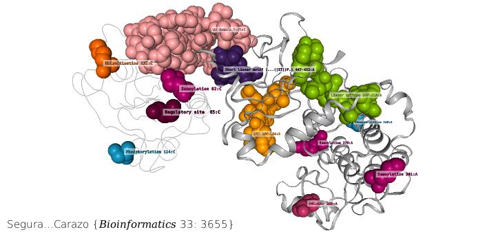 3DBIONOTES v2.0: a web server for the automatic annotation of macromolecular structures. Bioinformatics. 2017 Nov 15;33(22):3655-3657. doi: 10.1093/bioinformatics/btx483.