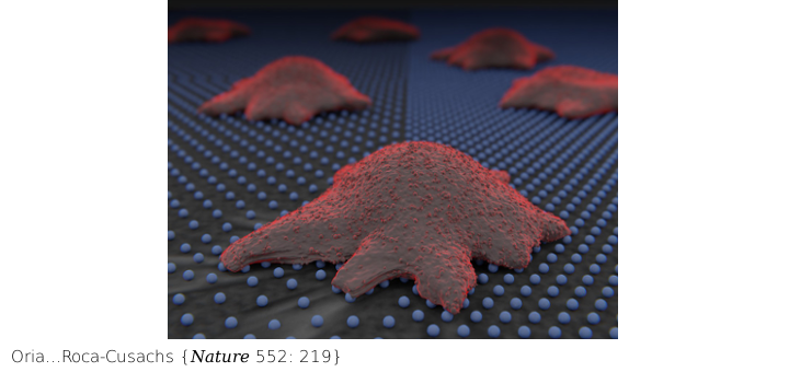 Artistic rendering of a cell attaching to a substrate coated with a gold nano-pattern array, used to study how cells detect spatial cues.